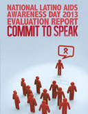 NLAAD Evaluation Report 2013